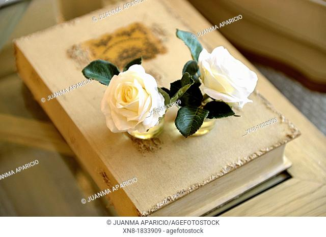 Pair of roses above a book