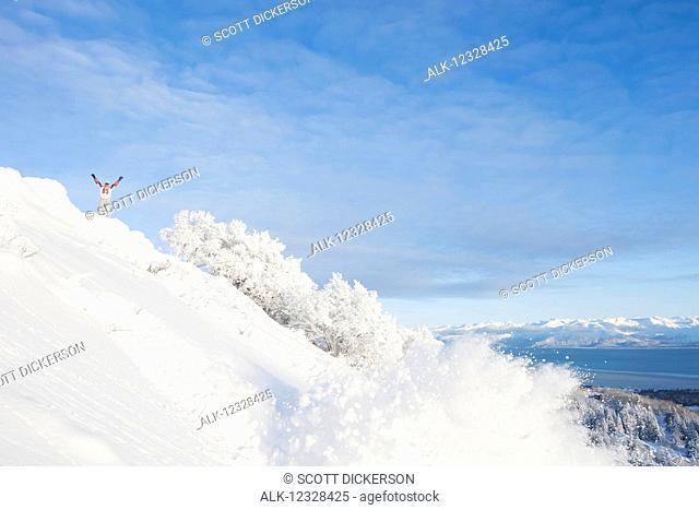 Snowboard on a snowy hillside, Homer, Southcentral Alaska, USA