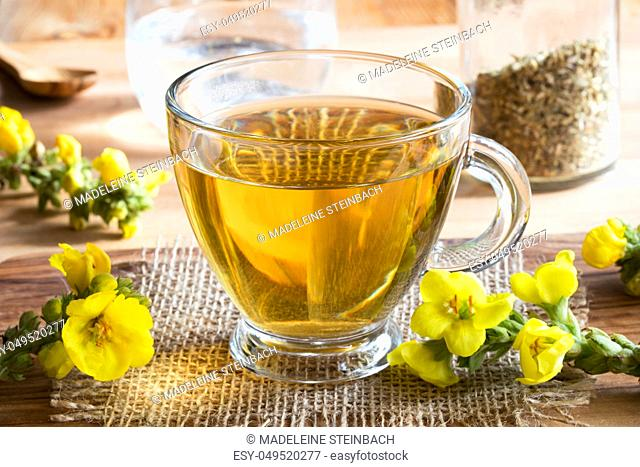 A cup of mullein (verbascum) tea, with fresh mullein flowers in the foreground