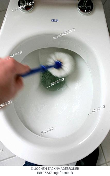 DEU, Germany : Housecleaning in a private house/apartment. Cleaning in the bathroom. Toilett, WC