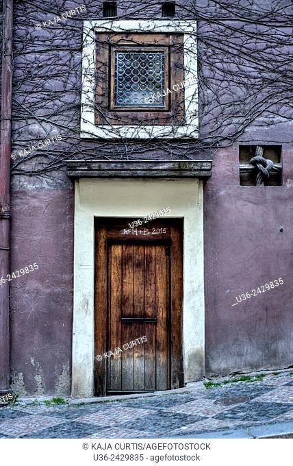 Door Window Vines