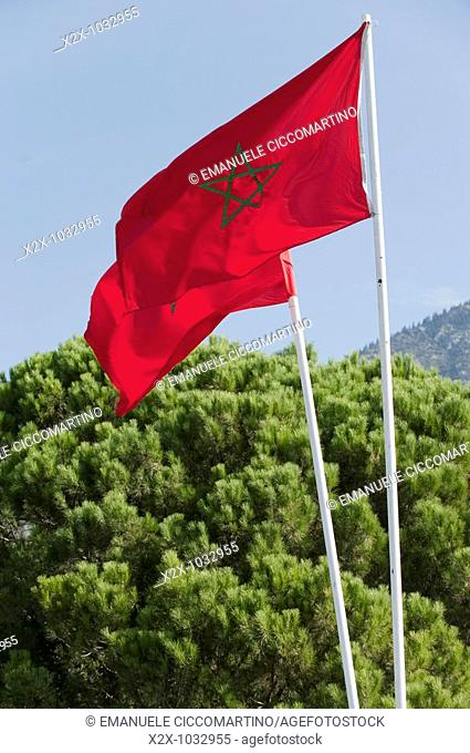 Moroccan flags and Rif pines, Chefchaouen, Morocco