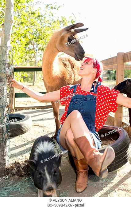Woman with pink hair sitting on tire face to face with llama