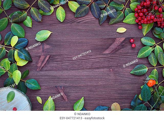 Brown wood background with fallen leaves, hemp and viburnum branch, an empty space in the middle
