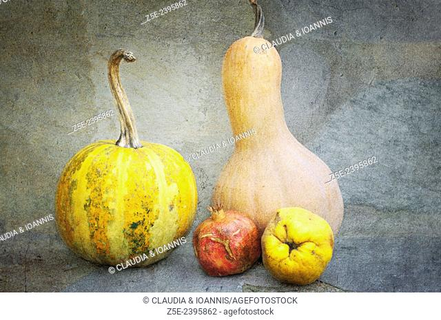 Textured still life with pumpkins, pomegranate and quince