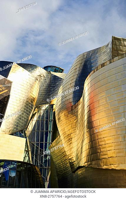 Detail of the Guggenheim Museum, Bilbao, Biscay, Basque Country, Euskadi, Euskal Herria, Spain, Europe