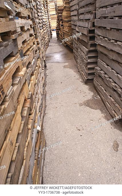 Stacks of pallets at pallet recycling business in Michigan, USA