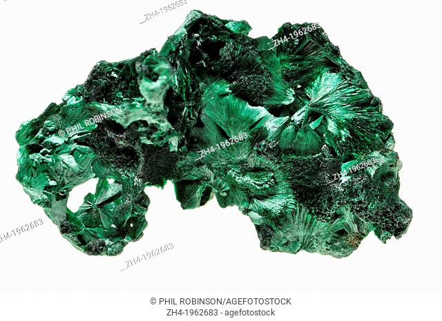 Malachite [green copper carbonate hydroxide] Fibrous chatoyant form giving cat's eye effect