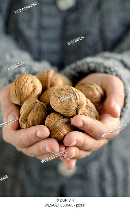 Hands holding walnuts, close-up