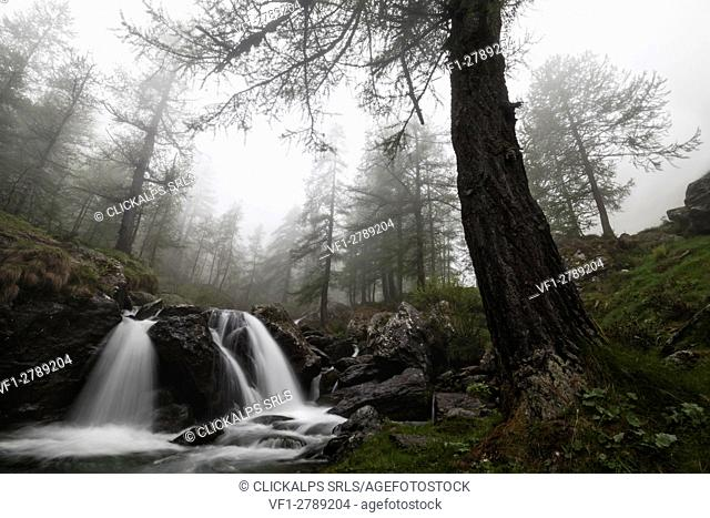 Pellice Valley, Piedmont,Turin,Italy. Waterfalls in the piedmont valleys