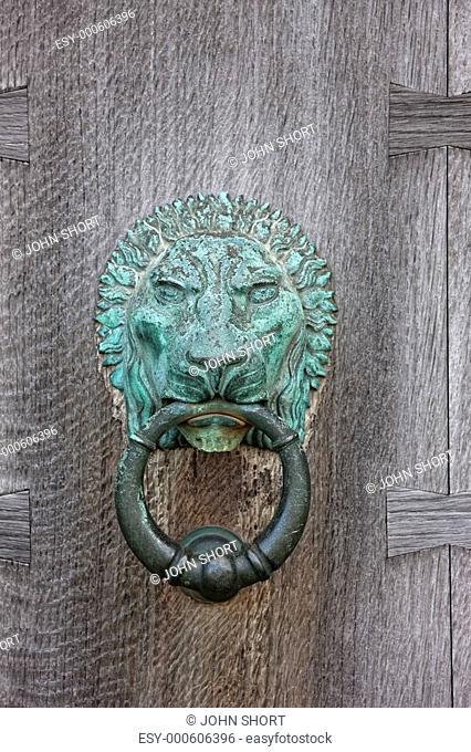 northumberland, england, an iron lion door knocker on a wooden door