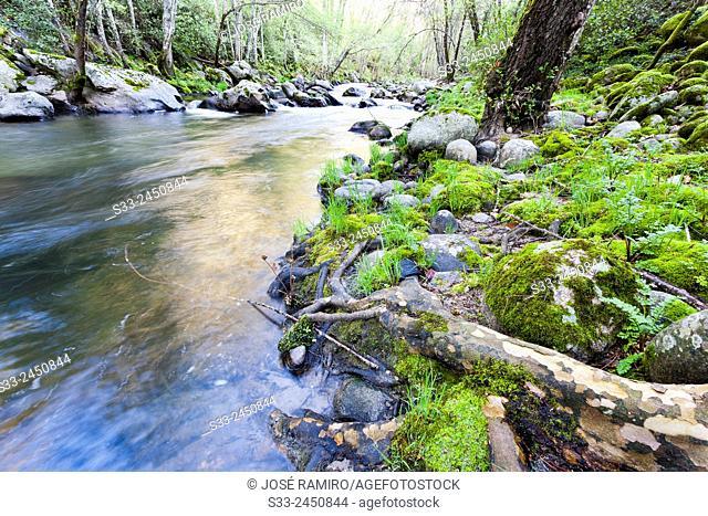 Arenal river in Arenas de San Pedro. Avila. Castilla Leon. Spain. Europe