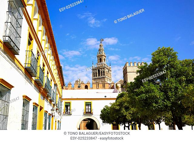 Seville Giralda tower of Sevilla from Alcazar Andalusia Spain