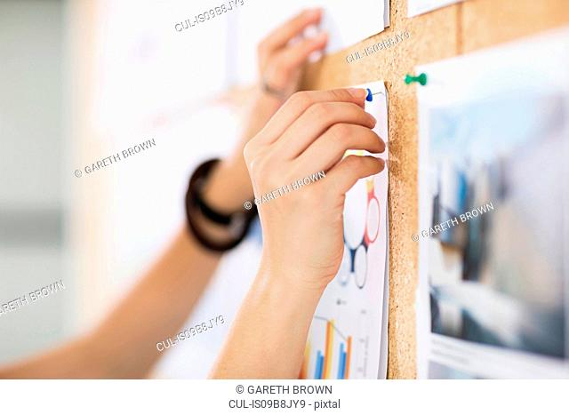 Woman pinning up colour charts and graphs