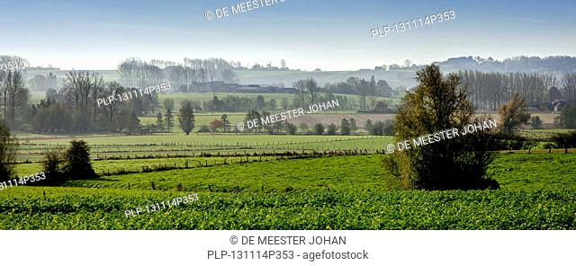 Rural landscape showing farmland at the Pays des Collines in the Flemish Ardennes, Hainaut, Belgium