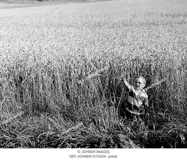 Boy playing in wheat field