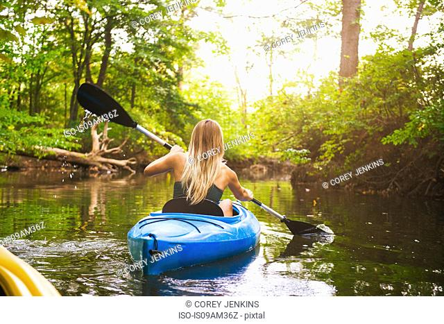 Rear view of young woman kayaking on forest river, Cary, North Carolina, USA