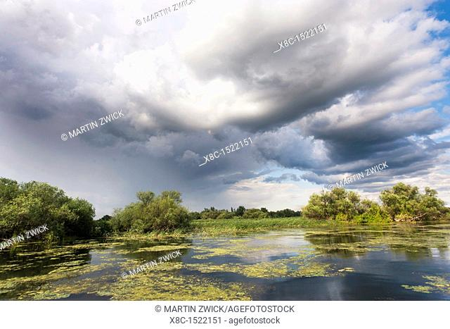 Lakes in the Danube Delta, romania, thunderstorm clouds form in the air, which is full of moisture from the huge evaporation surface of the still flooded Delta...