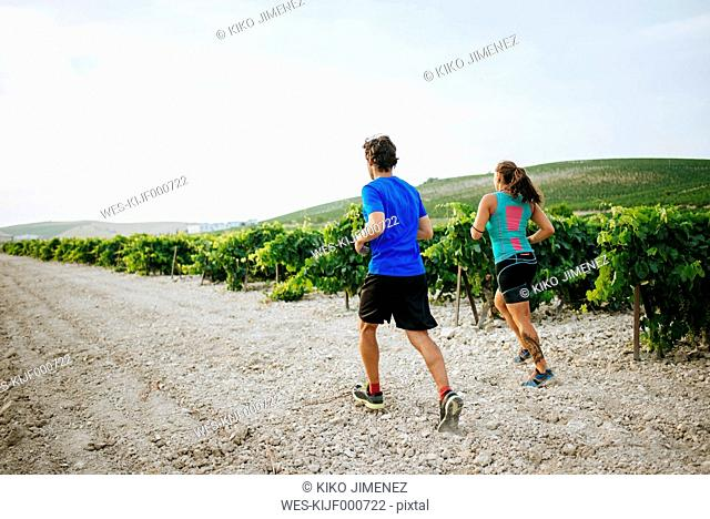 Couple running in a vineyard