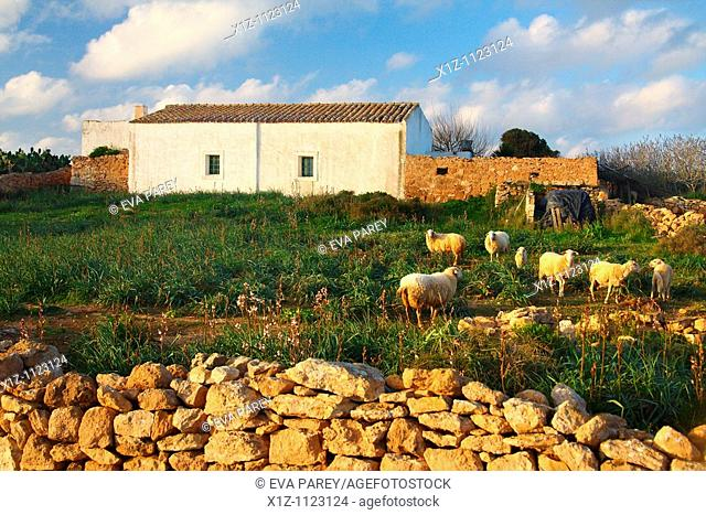 A typical rural house in the island of Formentera Baleares, Spain