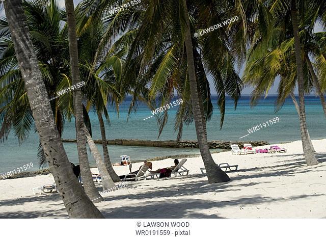 Palm trees and small pier off beach, Maria La Gorda, Cuba, Caribbean