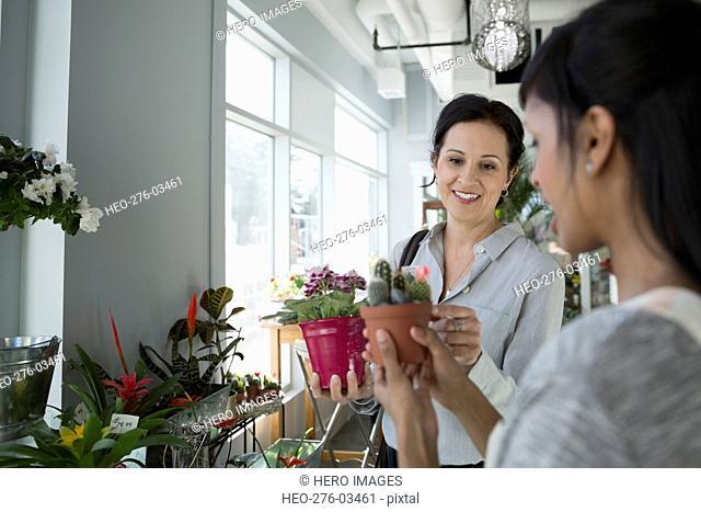 Florist showing customer cactus flower pot flower shop