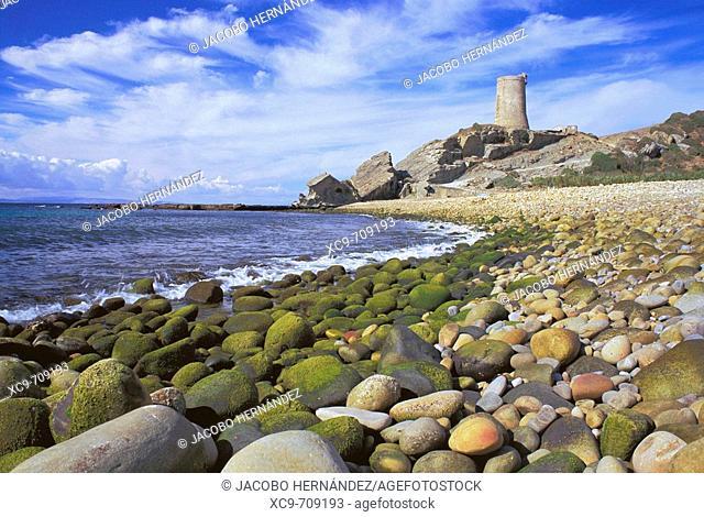Punta de Guadalmesí. Estrecho de Gibraltar. Cádiz province. Andalusia. Spain