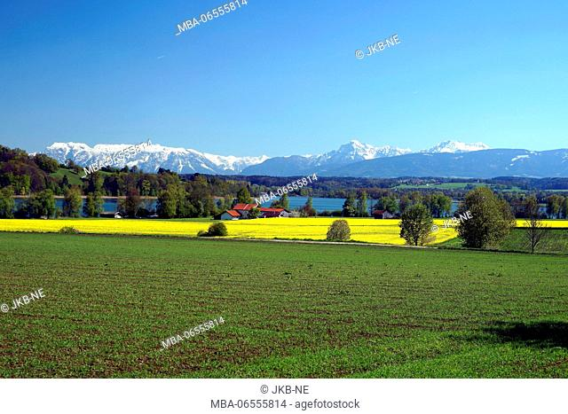 Europe, Germany, Bavaria, district Traunstein, view to the Alps, spring, Tachinger See