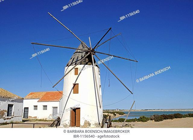Windmill, Parc Regional de las Salinas, Salinas de San Pedro, Natural Park, San Pedro de Pinatar, Mar Menor, La Manga, Murcia, Spain, Europe