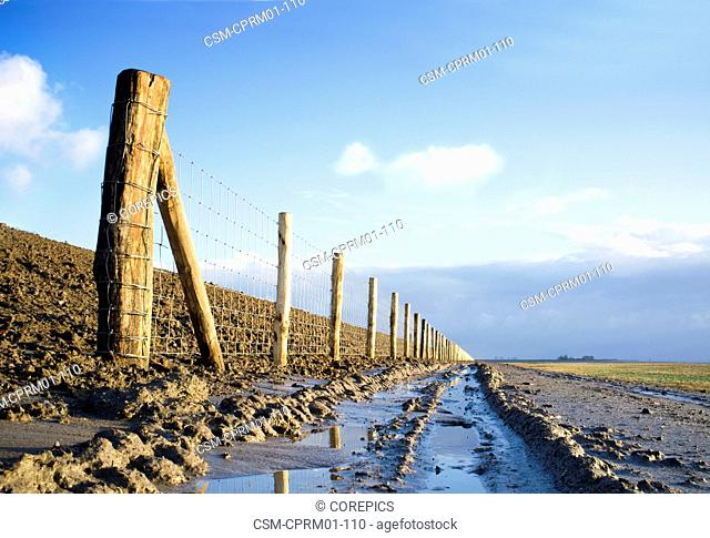 New fence and fence posts on the elevated dyke in Ellewoutsdkijk, Netherlands, on a bright winters' day
