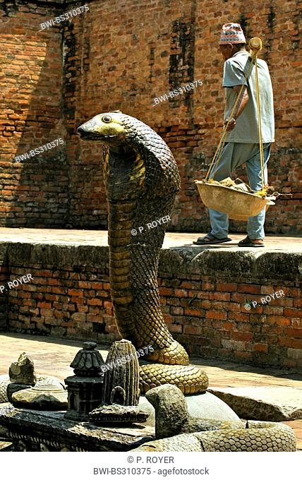 cobras (Naja spec.), stone sculpture of an errected snake at a temple at Durban square, Nepal, Patan