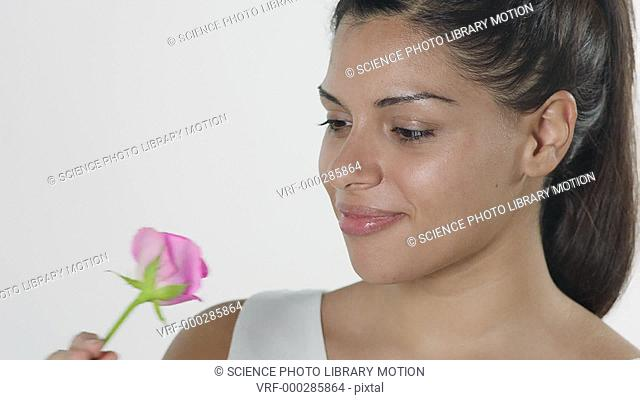 MODEL RELEASED. Woman smelling a pink rose