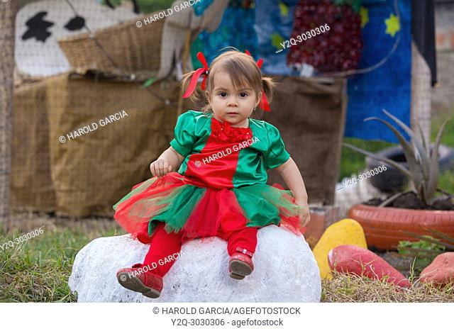 Infant Girl dresses Tulle Romper Christmas Outfit