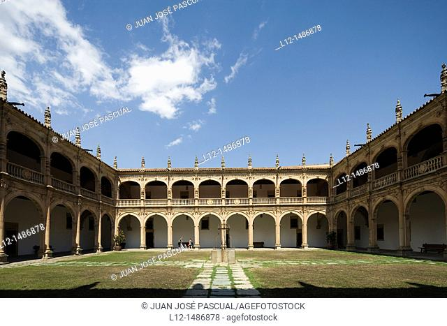 Fonseca college or Irish college, cloister, Salamanca, Castilla y León, Spain