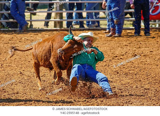 Arcadia All-Florida Championship P. R. C. A. Rodeo held in the southwestern Florida town of Arcadia