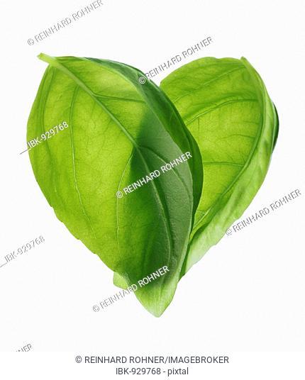Basil leaves arranged in a heart-shape