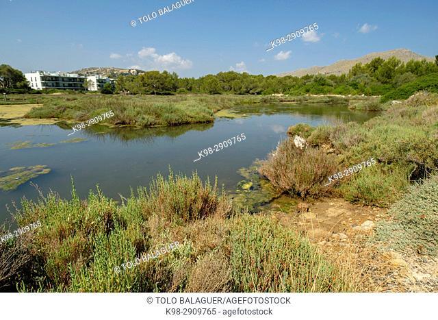 centro de turismo ornitologico La Gola, pollensa, Mallorca, Balearic Islands, Spain