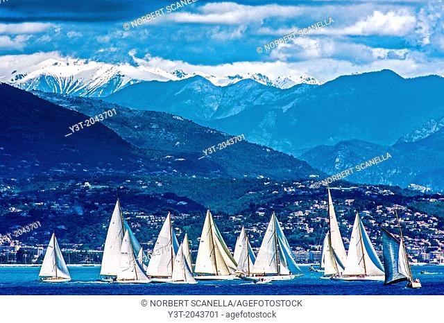 Europe, France, Alpes-Maritimes, Antibes. Les Voiles d'Antibes. Old sailing regatta collection, yachting trophy Paneira, a selection of the finest vintage...