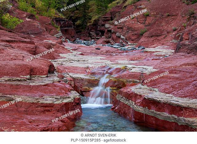 Argillite sedimentary mineral layers in Lost Horse Creek, Red Rock Canyon, Waterton Lakes National Park, Alberta, Canada