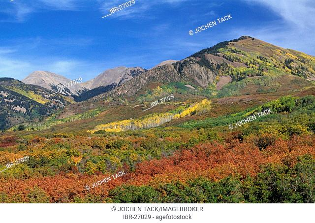 USA, United States of America, Utah: La Sal Mountains eastern of Moab, La Sal National Forest