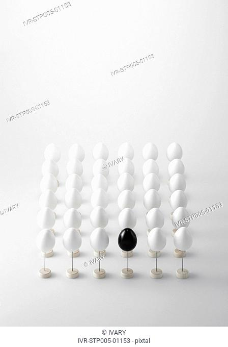 Black Egg Among White Eggs