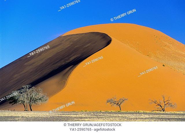 Namibia, Namib-Naukluft National park, Sesriem, Dune 45