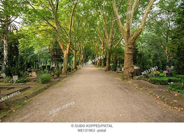East Berlin, Berlin, Germany. Avenue through the old cemetery St. Georgen Friedhof