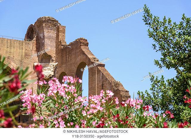 Basilica of Maxentius, Rome, Italy