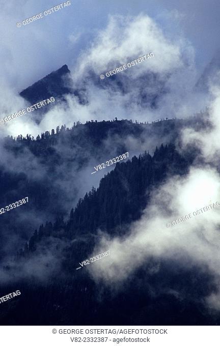 South Fork Stillaguamish River drainage with fog, Mt Baker-Snoqualmie National Forest, Washington