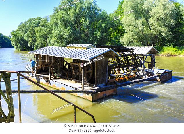 Floating mills on the Mura river. Babic mill at Verzej. Styria region. Slovenia, Europe