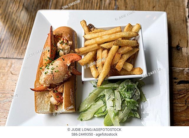 Lobster Roll, French Fries and Cucumber Salad, beautifully aranged on a white square plate