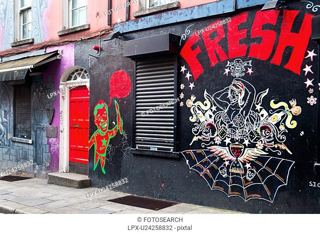 Street in Dublin with pink and purple painted walls, red wooden door and graffiti of cartoon figures amd spider web, Dublin, Southern Ireland