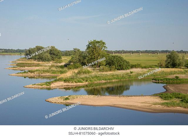 The river Elbe at Lower Saxonian Elbe Valley, biosphere reserve. Lower Saxony, Germany