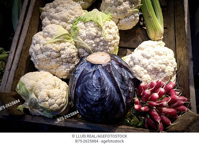 Wooden box with organic vegetables, cauliflower, radishes and cabbage. East London, London, England, United Kingdom, Europe